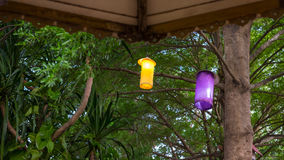 Lamp Under the tree Royalty Free Stock Image