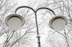 Lamp in the winter park Stock Photography