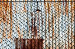 Lamp with wired fence and Rusted iron plate Stock Photos