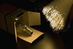 Lamp2. Lamp bulb optical fiber floodlight Royalty Free Stock Photo