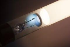 lampa Royaltyfri Foto