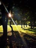 ljus sun Arkivbilder