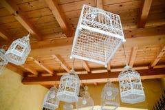 lampa för fågelburar Arkivfoton