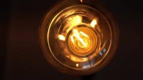 Lampa för ljus kula för volfram över svart bakgrund Begrepp av ljust och mörkt, idé, elektricitet på det moderna hemmet Botten be lager videofilmer