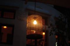 Lampa i bur Arkivbild