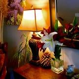 Lampa i entryway Fotografering för Bildbyråer