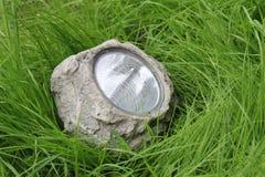 Lampa i gräset Fotografering för Bildbyråer