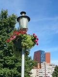 Lampa i kwiaty zdjęcie stock