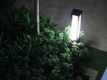 Lampa i roślina fotografia stock