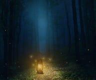Lampa i skogen Royaltyfri Bild