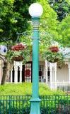 Lampa i trädgård Arkivbilder