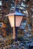 Lampa på vintermorgon Fotografering för Bildbyråer