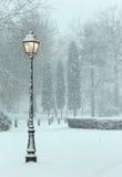 lampa - yellow Royaltyfri Fotografi