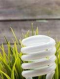 Lampada Fotografie Stock