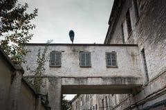 Lampada al tetto della prigione Immagini Stock Libere da Diritti