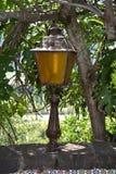Lampada all'aperto sotto un fico Fotografia Stock Libera da Diritti