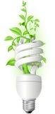 Lampada con la pianta Fotografie Stock