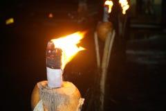 Lampada del fuoco in re Coconut In Srilanka immagini stock