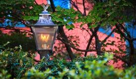 Lampada del giardino Fotografia Stock