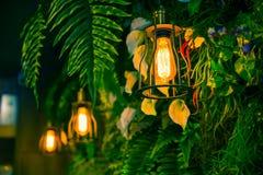 Lampada della giungla nella decorazione del caffè della pianta verde della foresta Fotografia Stock Libera da Diritti