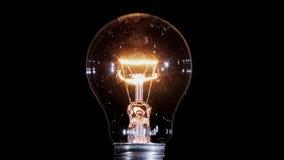 Lampada della lampadina del tungsteno che lampeggia sopra il fondo nero, ciclo pronto video d archivio