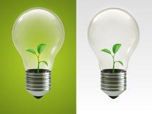 Lampada di Eco Fotografie Stock Libere da Diritti