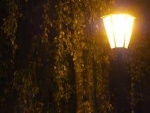 Lampada di via al crepuscolo Fotografia Stock