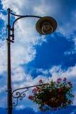 Lampada di via con i fiori Fotografie Stock Libere da Diritti