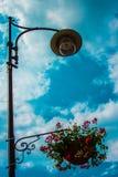 Lampada di via con i fiori Fotografia Stock