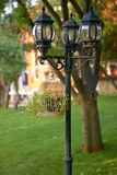 Lampada di via decorata sul prato inglese del fondo in Bulgaria Fotografia Stock