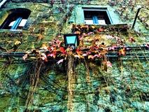 Lampada di via, edera rossa e gialla, finestre e parete medievale immagini stock libere da diritti