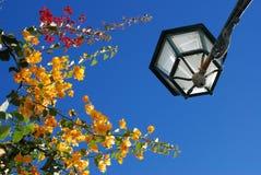 Lampada di via nel Portogallo Fotografia Stock