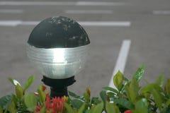 Lampada di via rotonda con le foglie ed i fiori Fotografia Stock