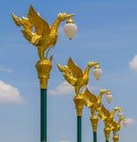 Lampada dorata del cigno che affronta destra sopra Fotografie Stock Libere da Diritti