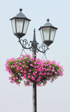 Lampada e fiori di via Fotografie Stock