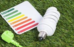 Lampada economizzatrice d'energia sui gras verdi Fotografia Stock Libera da Diritti