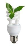 Lampada fluorescente compatta economizzatrice d'energia Immagine Stock Libera da Diritti