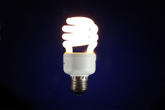 Lampada luminescente Immagine Stock