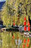 Lampada rossa in Willow Tree Fotografia Stock Libera da Diritti