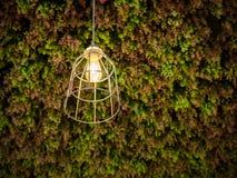lampada a sospensione della Cavo-struttura Fotografia Stock Libera da Diritti