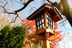 Lampada tradizionale arancio con gli alberi di autunno al santuario nel Giappone immagini stock libere da diritti