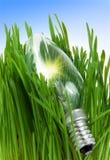 Lampada in un'erba Fotografia Stock