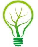 Lampada verde della lampadina con l'albero Immagini Stock