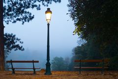 Lampadaire en parc Photos stock