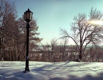 Lampadaire sur un fond des arbres nus en hiver Images libres de droits