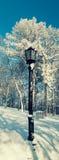 Lampadaire sur un fond des arbres nus sur la pente Image stock