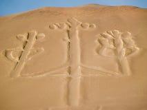 Lampadario nella sosta nazionale di Paracas fotografia stock libera da diritti