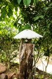 Lampade del giardino Fotografia Stock Libera da Diritti