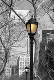 Lampade di via del parco di batteria, New York Immagine Stock Libera da Diritti