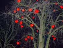 Lampade in forma di cuore che appendono su un albero Fotografie Stock Libere da Diritti